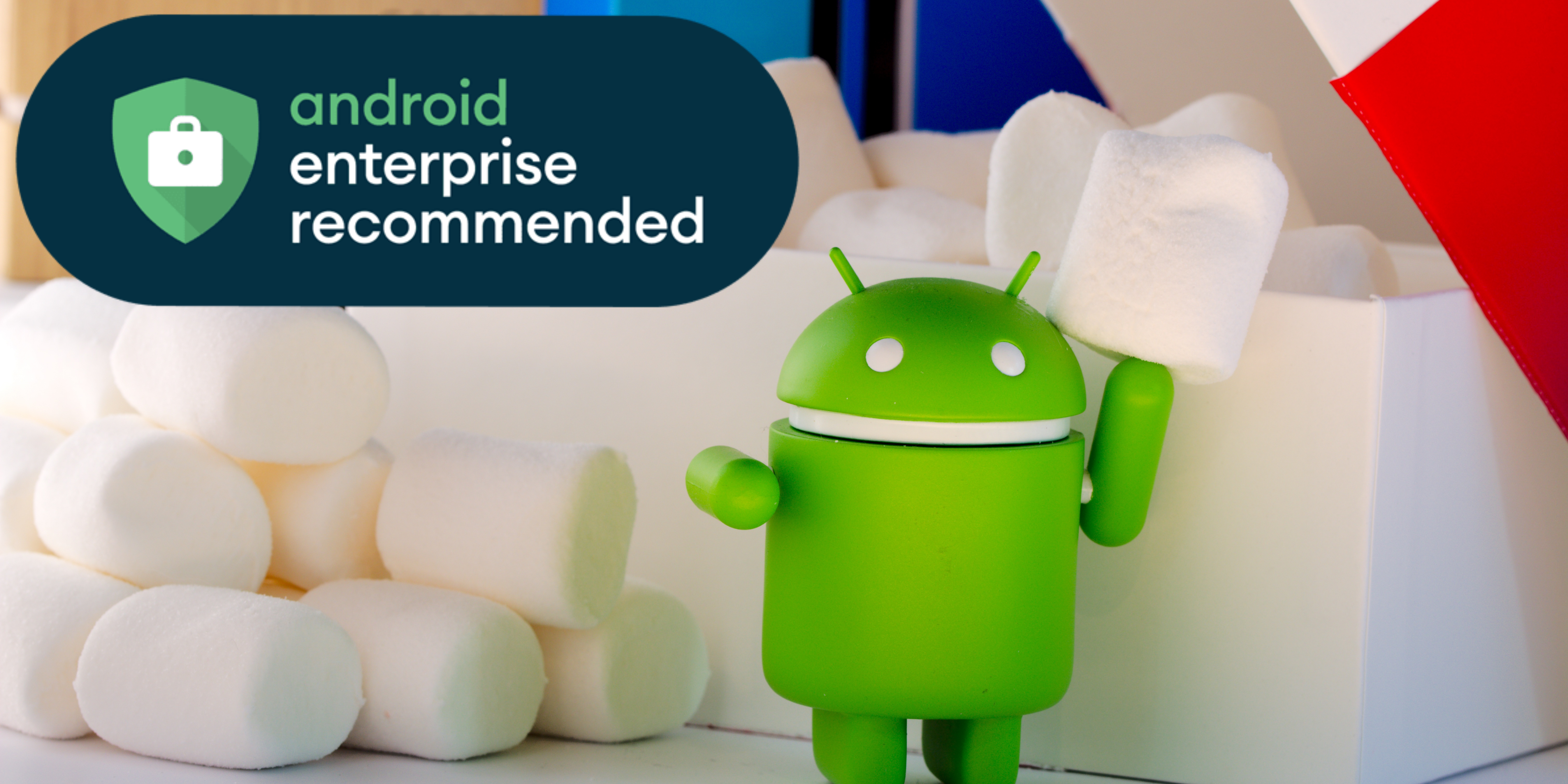 Eutronix Google Android Enterprise Recommended