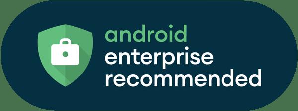 Eutronix Google Enterprise Recommended